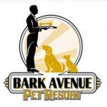 bark_avenue